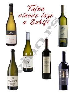 Tajna vinove loze, izabrano iz Srbije, Bagrina